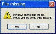 Windows can not find the file. . .