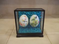 Vintage Chinese Hand Painted Egg Shells in Glass Case FLORAL HAND PAINTED  TR