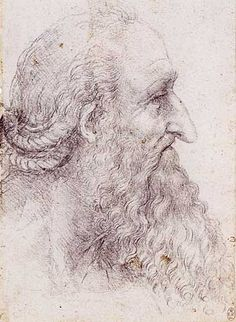 Profile Study of an Old Man with a Beard and Braided Hair, Leonardo da Vinci
