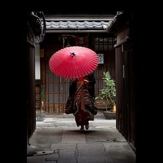Japan - Woman in Kimono carrying Benigasa Umbrella in Kyoto