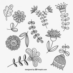 Zentangle Drawings, Zentangle Patterns, Doodle Drawings, Vector Flowers, Flower Clipart, Folk Embroidery, Embroidery Designs, Mehndi Designs For Beginners, Floral Doodle