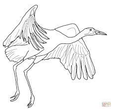 Image Result For White Crane Flying Bird Coloring Pages