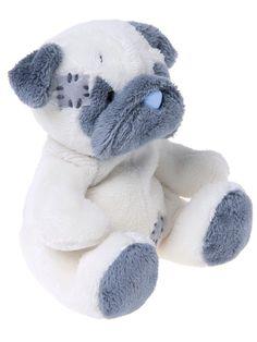 Pug blue nose bear!!!