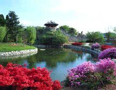 Official Site of Korea Tourism Org.: Korea Pictures - Photo Gallery | Official Korea Tourism Organization