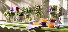 Nature vive: tutti i profumi della Provenza Table Decorations, Tableware, Furniture, Home Decor, Houses, Provence, France, Dinnerware, Decoration Home