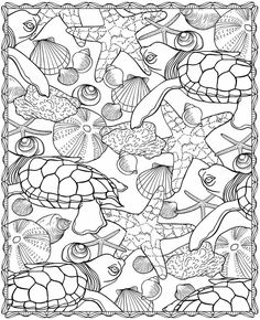 Turtle Sea life ocean starfish shells Coloring pages colouring adult detailed advanced printable Kleuren voor volwassenen coloriage pour adulte anti-stress kleurplaat voor volwassenen
