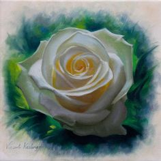 Oil painting of a small white rose