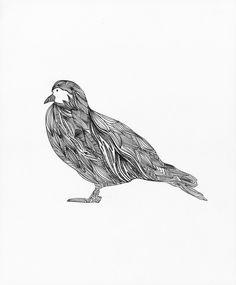Bird Series by Erica Reyna.