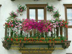 tem-flores-na-janela-8-728.jpg (728×546)
