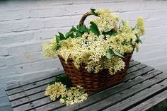 11 Best Elderflower Recipes
