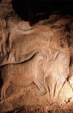Ibex panels. Roc aux Sorciers France, about 13,000 - 12,000 BCE