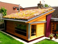 One of our smaller domestic installations. The colours of the roof change over the course of the year as the vegetation grows. In autumn reds and yellows start to develop in the sedum.