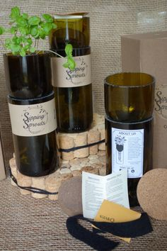 Sipping Sprouts: wine bottle planters that are self-watering