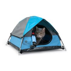 Australian company Cat Camp have designed the perfect kitty hideaway in the form of a cat-sized camping tent. The adorable mini structure looks just like a human-sized tent, and can be used both indoors and outside. Tent Camping Beds, Best Tents For Camping, Camping Gear, Camping Gifts, Motorcycle Camping, Truck Camping, Luxury Camping, Camping Lunches, Camping Cabins