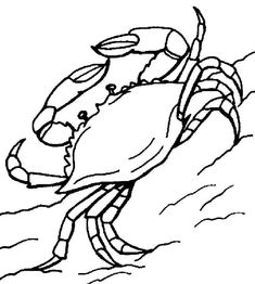 Coloring Blue Crab Coloring Pages and Wonderful Crab Coloring Pages Gallery Kids Ide Unk Blue Crab Coloring Pages Animal Coloring Pages, Coloring Book Pages, Coloring Sheets, Crab Clipart, Papier Paint, Crab Painting, Crab Crafts, Crab Tattoo, Crab Art