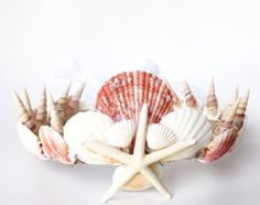 Mermaid Shell crown // mermaid costume crown // shell crown // sea shells