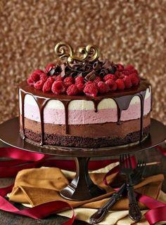 Chocolate raspberry moose cake