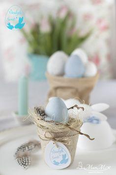 Doniczka z jajkiem & diy