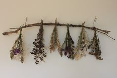 Hanging branch of dried flower bouquets