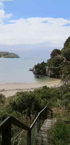 Stewart Island - NZ