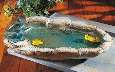 Felsenteich mit Frosch - Ausdrucksstarke, wetterfeste Keramik. Bestens geeignet als Vogeltränke, aber auch als Zimmerteich ein Blickfang. Besonders schön mit ein paar schwimmenden Blüten.