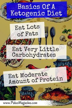 Basics of a Ketogenic Diet Infographic from paleo flourish magazine