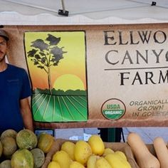 7 tips for navigating your farmers market