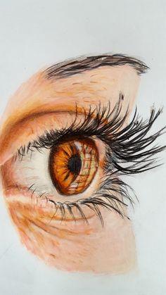 Coloured Pencils, Landscape, Portrait, Artwork, Animals, Color, Art Work, Animales, Colour