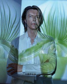 David Bowie   Tim Bret Day