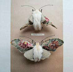 Prachtige flora en fauna van vintage stoffen. Textiel kunstenaar Mister Finch werkt uitsluitend met gerecyclede materialen.