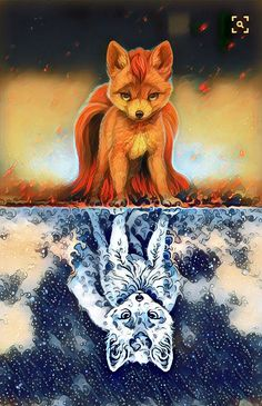 You are what you consider - Pets Cute Kawaii Drawings, Cute Animal Drawings, Cute Animal Pictures, Cute Fantasy Creatures, Mythical Creatures Art, Fantasy Wesen, Fantasy Art, Wolf Artwork, Wolf Spirit Animal