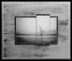 #Photography by Marie Gruber. #loveccaf