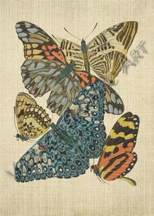 Motyle przez Seguy clip art Vintage Digital Download | Etsy New York Public Library, Image Shows, Printable Wall Art, Background Images, Wall Art Prints, Decoupage, Card Making, Art Deco, Clip Art