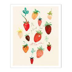 It is raining strawberries - Il pleut des fraises