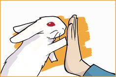 4 Tricks to Teach Your Rabbit: A Step-By-Step Guide