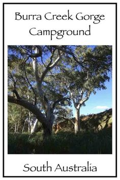 Burra Creek Gorge Campground - Trippin' Turpins River Bank, Red River, South Australia, End Of The World, Campsite, Traveling By Yourself, Sailing, Things To Do, Explore