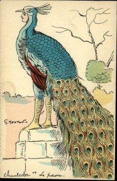 Peacock w Woman's Face Fantasy A/S Georges Mouton c1910 Postcard | eBay