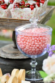 Pink Jelly Bellys! Picnic in the Park by Kara Allen | Kara's Party Ideas in NYC_-13