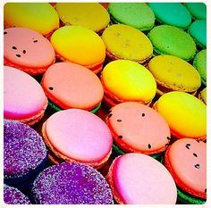 A rainbow of Macarons! Sucre New Orleans