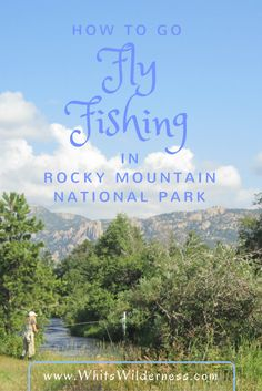 How to go fly fishing in Rocky Mountain National Park on your summer vacation. An experience that can't be beat! Rocky mountain fishing, fishing guides, things to do in colorado, summer vacation ideas, mountain vacation ideas, fishing instruction
