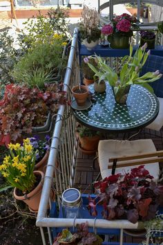 Tips how to create your spring balcony at home. Simple tips for small and shadowy balconies with gardening tools, plants and planting tips. Bohemian Interior Design, Balcony Garden, Outdoor Spaces, Garden Tools, Spring, Green, Nature, Balconies, Beautiful