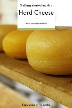 Getting Started Making Hard Cheese - Homestead In The Holler Goat Milk Recipes, No Dairy Recipes, Cheese Recipes, Fresh Cheese Recipe, Yogurt Recipes, Healthy Recipes, How To Make Cheese, Making Cheese, Rennet Cheese