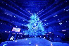 あの東京駅での 時間潰しにもってこいな JPタワーの商業施設 KITTEに 恒例の巨大クリスマスツリー出現デス。 そして、こんな素敵な 2種類のライトアッププログラムも。 [youtube]htt...