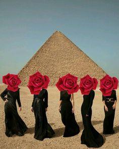 """Collage Art #girlsquad #black #egypt #exotic #red #roses…"""""""