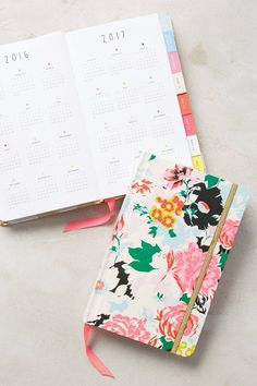 Rosy Outlook 2016 Planner by ban.do