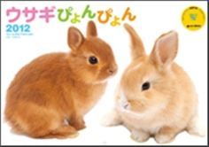 rabbit ぴょんぴょん calendar
