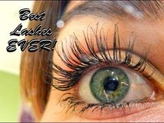 ▶ How To Grow Long Eyelashes FAST! (Guaranteed Longer Eyelashes) - YouTube