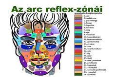az+arc+reflexzónái.jpg (720×508)