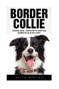Border Collie: Training Guide - Learn How To Train Your Border Collie In Just 7 Days! (Dog Training Guide, Border Collies, Border Collie Puppy)  #Border #Collie #Collies #days #Guide #Just #Learn #Puppy #Train #Training From BorderCollies.xyz. Click through for more!