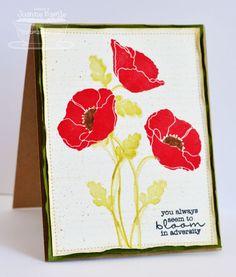 Pretty Poppies - Joanne Basile